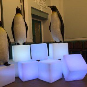 Penguin Birthday Party Theme and Decor